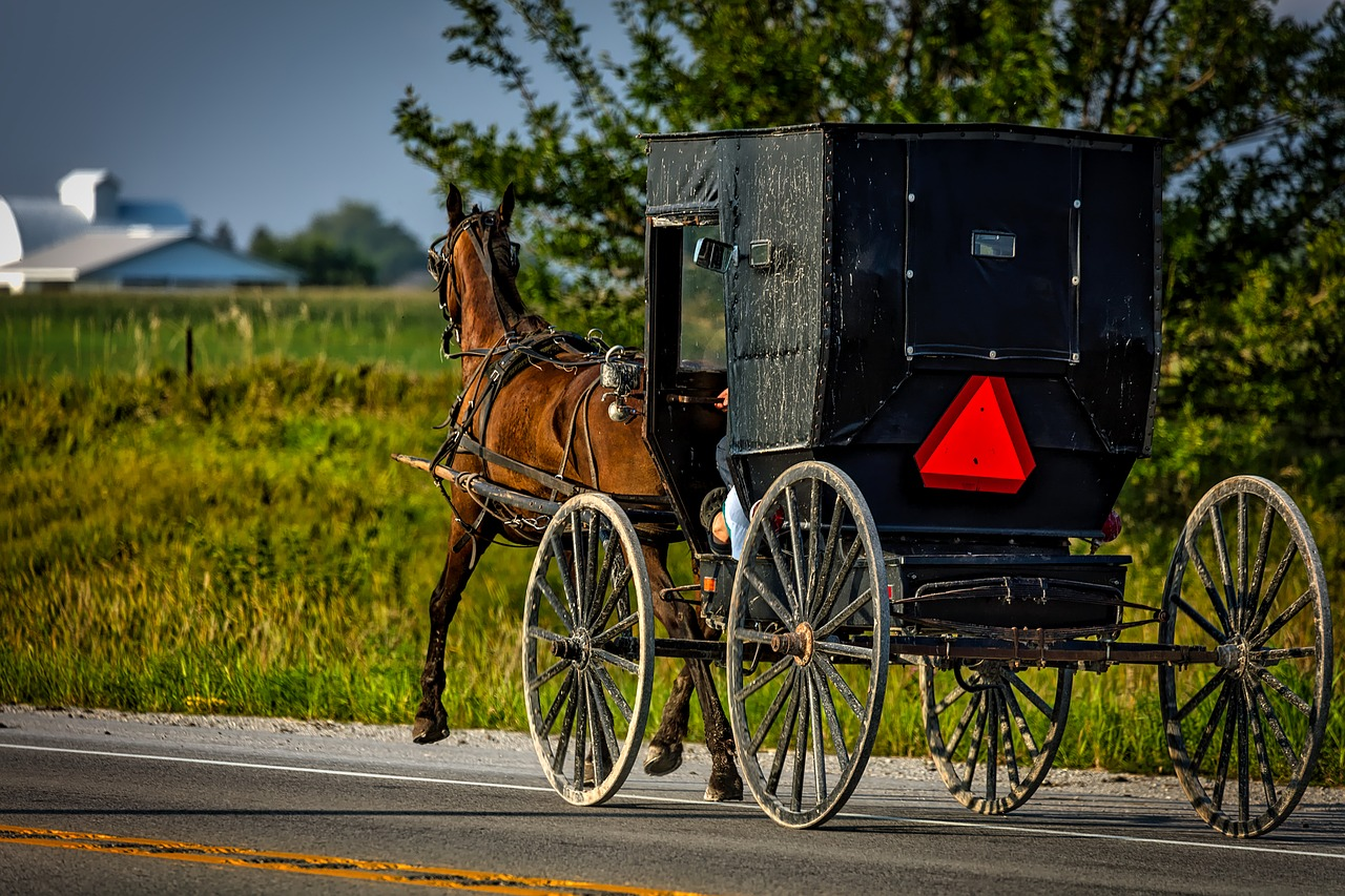 Amish Man on Horse Drawn Buggy Arrested for Drunk Driving